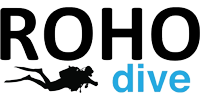 Learn to dive with Roho Dive School