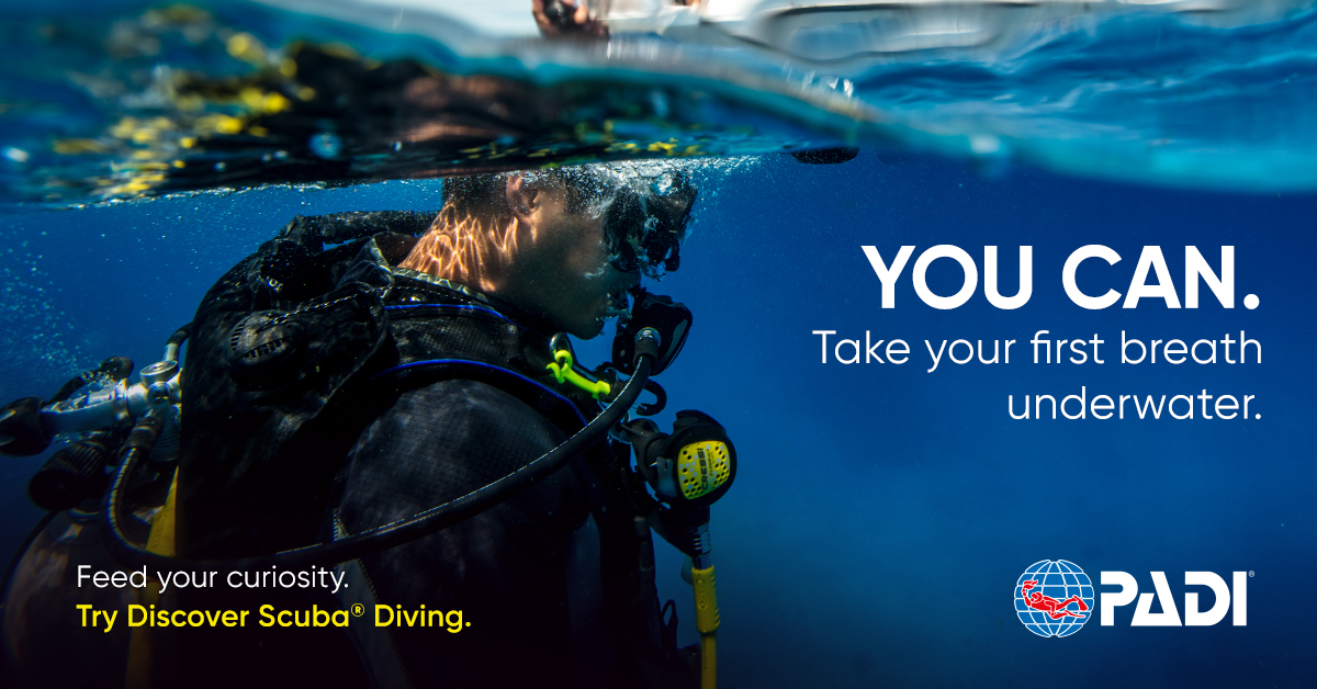 Try Scuba Diving - If you want to try scuba diving, but aren't quite ready to take the plunge into a certification course, the Try Scuba Courses are for you.